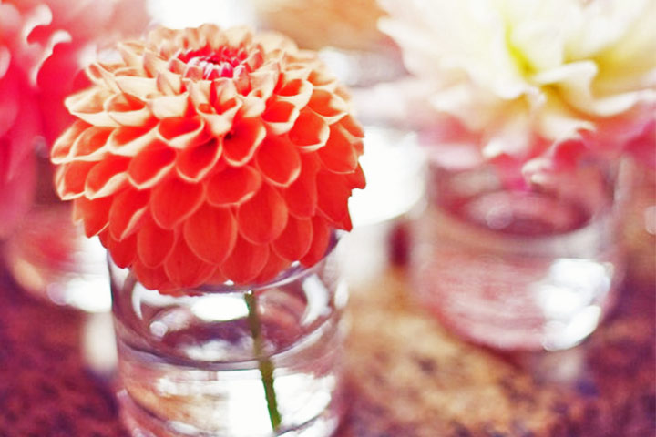 10 cheerful coral wedding decorations that are perfect for your 10 cheerful coral wedding decorations that are perfect for your wedding junglespirit Gallery
